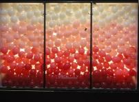 Simple et poétique, la vitrine de la maison Flamant.