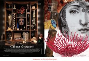 Moodboard _ Cabinet de Curiosités (2014)